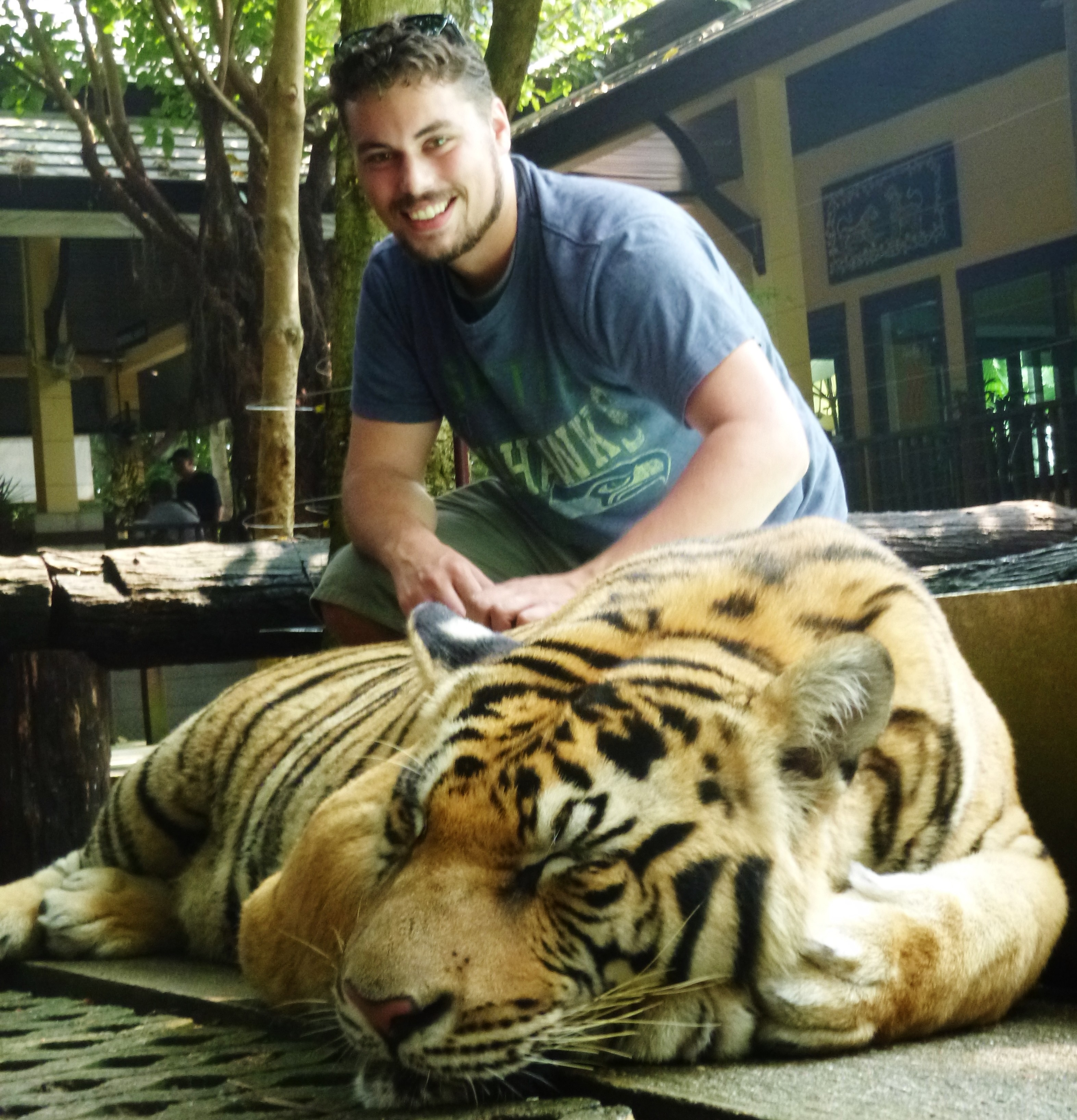 Tiger Kingdom 01