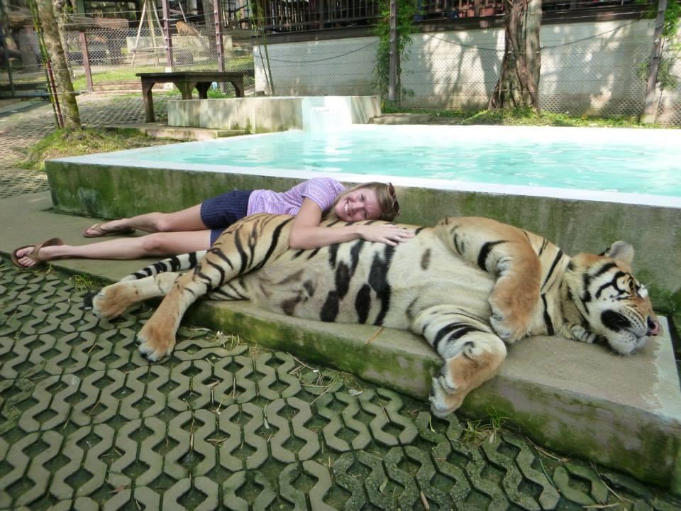 Tiger Kingdom 03